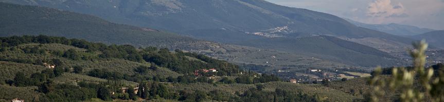 Umbria Wine Tours - Parco Monte Subasio