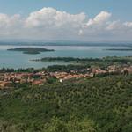 Umbria Wine Tours - Trasimeno