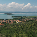 Umbria Wine Tours - Trasimeno