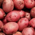 Umbria Wine Tours - patata rossa di Colfiorito IGP
