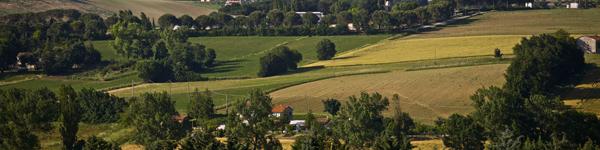 Umbria Wine Tours - Perugia Aziende Agricole