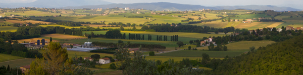 Umbria Wine Tours - Spoleto Aziende Agricole
