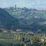Umbria Wine Tours - Torgiano