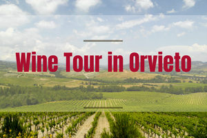 Wine Tour in Orvieto